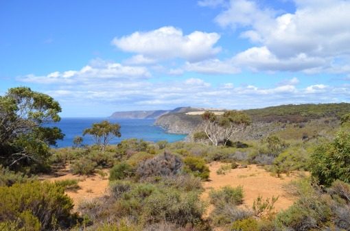 Paysage grandiose (Kangaroo Island)